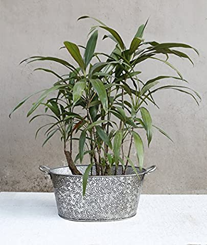 Store Indya, Dekorative metall korbe pflanzgefaß blumentopf mit laub design fur outdoor indoor gardening dekor zubehor