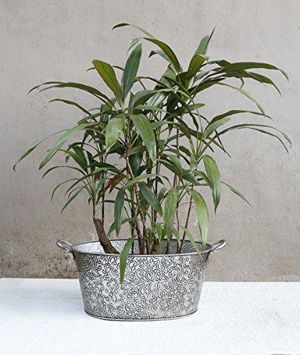 store-indya-hierro-rustico-maceteros-con-mango-titular-de-la-planta-de-flores-diseno-del-follaje-gra