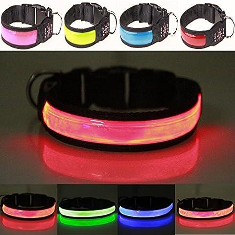 Reflektierende LED Hundehalsband, Ihren Hund zu schützen, USB wiederaufladbar Night Sicherheit Luminous blinkendes Halsband Leuchthalsband Hund Halskette Loop, mit verstellbare Schnalle–Hohe Sichtbarkeit & Verbesserte Sicherheit–4Farben,