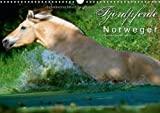 Fjordpferde - Norweger (Wandkalender 2014 DIN A3 quer): Kalender Fjordpferde / Norweger (Monatskalender, 14 Seiten)