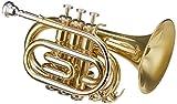 Roy Benson PT-302  Trompette de poche Sib Verni avec Etui forme léger