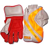 HRS Boys College Wicket Keeping Gloves,Below 13 years (Multicolour)