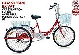Jorvik 61cm zusammenklappbar Erwachsene Dreirad, Cargo Trike–NEUE 2016Modell