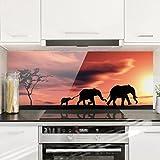 Bilderwelten Spritzschutz Glas - Savannah Elefant Family - Panorama Quer Wandbild Küchenrückwand Küchenspiegel Küchenspritzschutz Glasrückwand Küche Spritzschutz Herd, Größe HxB: 40cm x 100cm