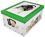 Unbekannt Aufbewahrungsbox Katzen Neu Stabiler Karton 51x37x24cm - grün
