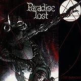Lost Paradise -
