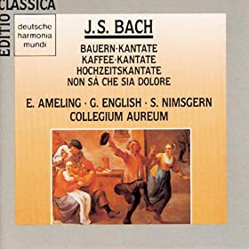 """Cantata No. 211: Schweigt stille, plaudert nicht, BWV 211, """"Coffee Cantata"""": Hat man nicht mit seinen Kindern (Aria)"""