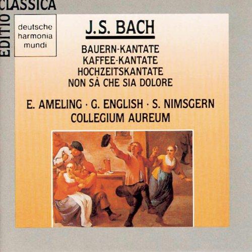 """Cantata No. 211: Schweigt stille, plaudert nicht, BWV 211, """"Coffee Cantata"""": Cantata No. 211: Schweigt stille, plaudert nicht, BWV 211, """"Coffee Cantata"""": Wenn du mir nicht den Coffee läßt (Recitativo)"""