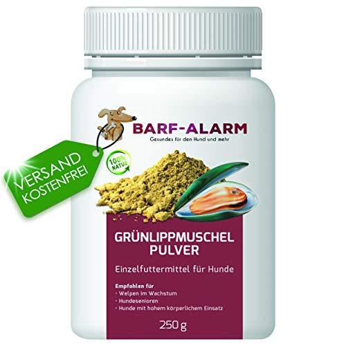 100% Grünlippmuschelpulver für Hunde 250g - Natürliches Grünlippmuschelextrakt Perna Canaliculus – Grünlippmuschel Hund Barf Pulver