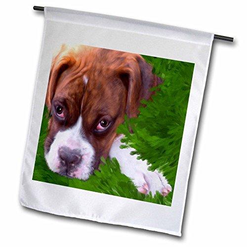 3DROSE FL _ 11978_ 1boxer Puppy Garden Flag, 12da 45,7cm
