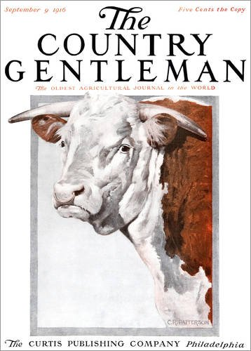 Country Gentleman Cover (Holzbild 90 x 120 cm: Cover of Country Gentleman (Kuh) von Remsberg/Design Pics)