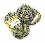 Regia Sockenwolle 4-fach Fb. 1439 100 Gramm,