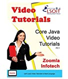 LSOIT Core Java Video Tutorials (DVD)