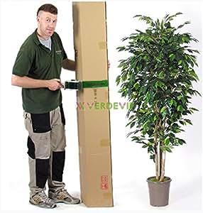 BENJAMIN FICUS Artificiale - Luxe - H. 150 cm - Verde - Con Vaso