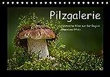 Pilzgalerie - Heimische Pilze aus der Region Rheinland-Pfalz (Tischkalender 2018 DIN A5 quer): 13 beeindruckende Pilzaufnahme