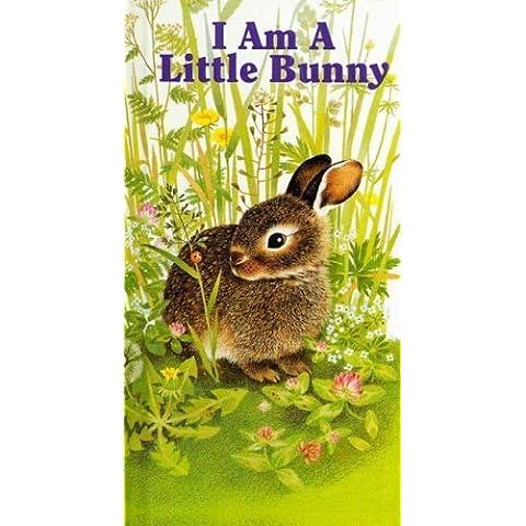 I Am a Little Bunny (Little Furry Friends) by Amrei Fechner (1994-04-01)