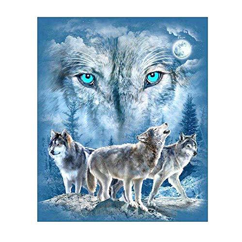 OOFAYWFD Diamant Malerei, 5D Wolf Wandbild DIY Eingelegten Handwerk Diamant Malerei Home Wandaufkleber Art Deco Diamant Stickerei (30X36 cm),Squaredrill