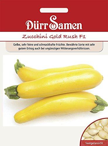 Dürr Samen Zucchini Gold Rush F1, gelbe Früchte Gold-frucht
