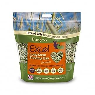 Burgess Excel Long Stem Feeding Hay (1kg) Burgess Excel Long Stem Feeding Hay (1kg) 51bXOSY3jYL