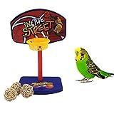 Mini canasta intelectiva de baloncesto para ave, juguete de...