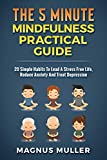 The 5 Minute Mindfulness Practical Guide: 20 Simple Habits To Lead A Stress Free Life, Reduce Anxiety And Treat Depression (The 5 Minute Self Help Series, Band 3)