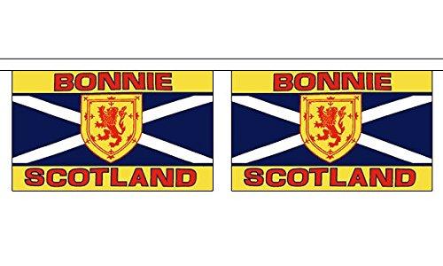 Bonnie Écosse Horizontal fanions