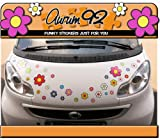 Best Car Decals - Funky Flower Colourful Car Stickers - Pack of Review