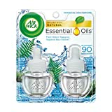 Best Air Wick Air Fresheners - Air Wick Scented Oil Refill Plug in Air Review