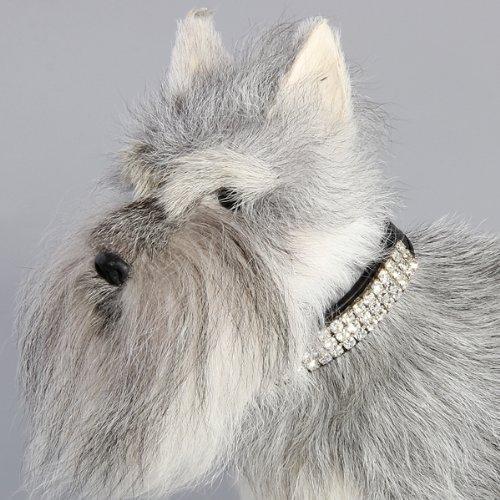 Hunde Halsband Halsbänder Strasshalsband Hundehalsband Leder Schwarz Größe XS - 5