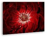 deyoli Nahaufnahme Einer roten Blüte Format: 80x60 Effekt: Zeichnung als Leinwand, Motiv fertig gerahmt auf Echtholzrahmen, Hochwertiger Digitaldruck mit Rahmen, Kein Poster oder Plakat