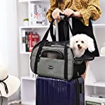 feandrea foldable pet dog carrier handbag with shoulder strap, for car, train and airplane travel, garbage bag included, grey, pdc42gy FEANDREA Pet Carrier, Dog Carrier, Pet Transport Bag, Black PDC42GY 51bYxyhzvAL