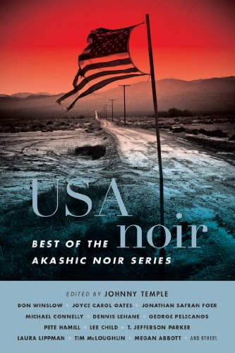 USA Noir: Best of the Akashic Noir Series (English Edition)