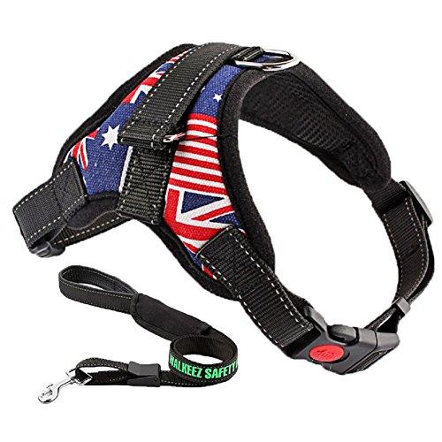 Sikete Regolabile soft non Pull del cablaggio del cane della maglia con il guinzaglio per la formazione Walking (Bandiera, M)