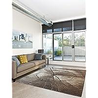 Suchergebnis auf Amazon.de für: 290 x 200 - Teppiche / Teppiche ...