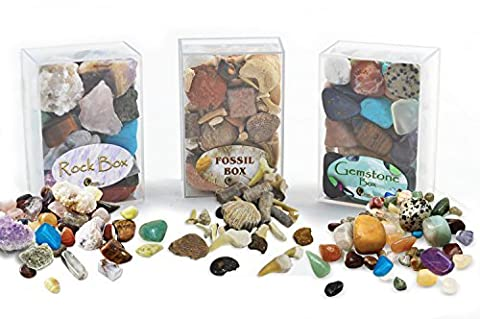 Fossil, Rock and Gemstone Box Collection. Set of 3