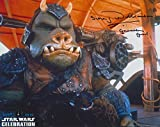 SIMON WILLIAMSON as a Gamorrean Guard - Star Wars GENUINE AUTOGRAPH - Star Wars - amazon.co.uk
