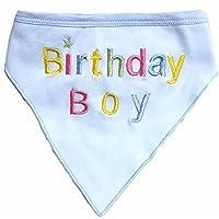 Alemon Hund Pet Geburtstag Bandana, für Hunde, blau