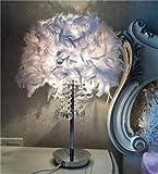 Flash-Feder Tischlampe Art und Weise kreativ Schlafzimmer Wohnzimmer Kristall Nachttischlampe