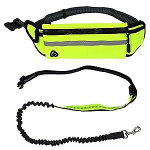 Kyc 3couleurs mains libres Laisse pour chien Pet Laisse de dressage avec sac banane pour chien pour l'entraînement de sécurité, la marche, la course à pied à la main tirer Laisse, Green