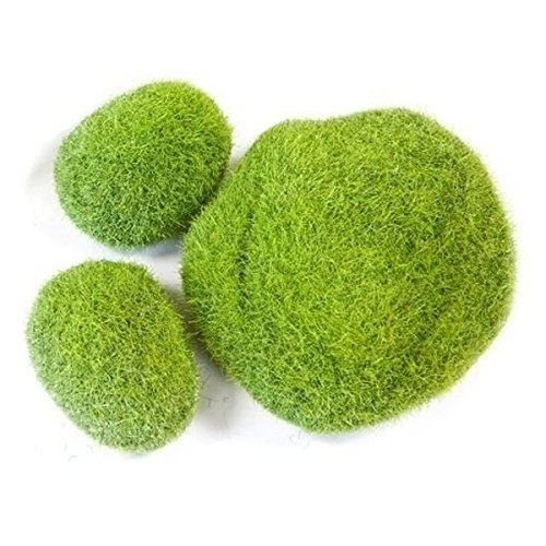 Visiodirect Lot DE 30 décors pelouses Verte