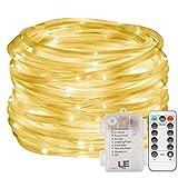 Die besten Landschaftsbau Lichter - Rope Lights, EONHUAYU 12M/39.4ft 120 LED Dimmbare Seil Bewertungen