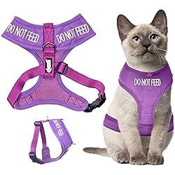 Dexil Arnés para gato con código de colores Chaqueta Alerta Acolchado y resistente al agua Haga que los demás sepan que viene su gato por adelantado