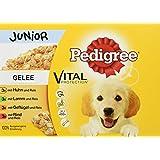 Pedigree Vital Protection Hundefutter mit Huhn und Lamm in Gelee