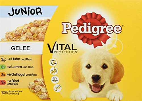 Pedigree Vital Protection Hundenassfutter, für Welpen im Beutel, Hundefutter in Gelee in verschiedenen Sorten, Im Multipack