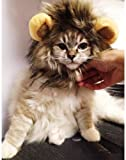 RICISUNG Pet dog hat pet cat lion wig with small ears