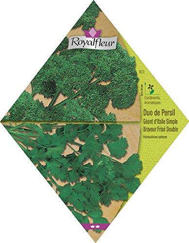 royalfleur-pfrv00923-graines-de-duo-de-persil