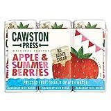 Cawston de prensa de Apple y Bayas del verano 3 x 200 ml (Pack de 18 x 200 ml)