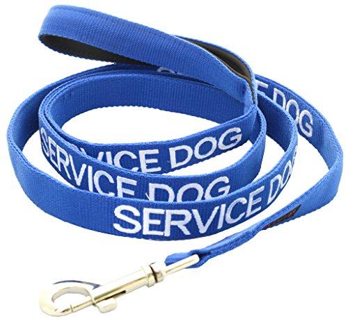 Service-Hund (im Dienst / Bitte nicht stören) blau Warnung Hund farbcodierte Edles personalisierte 60cm 1.2m 1.8m Leine Unfälle oder Zwischenfälle zu verhindern. Hund LEBENSLANGE GARANTIE Preisgekrönte (180cm) (Service-hund Mantel)