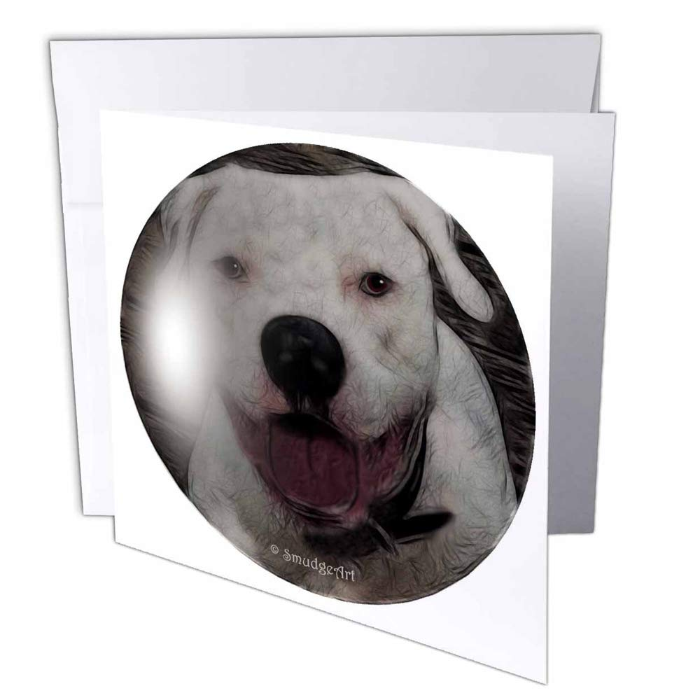 "3dRose gc_8143_2 6 x 6-Inch""American Bulldog"" Greeting Card (Pack of 12)"