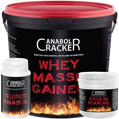 Whey Masse Gainer, Eiweißpulver, 3000g Eimer, Erdbeere, Toffi oder Vanille + 240 Kapseln Creatin / Kre-Alkalyn + 100 Kapseln Super Anabol